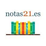 notas21-es